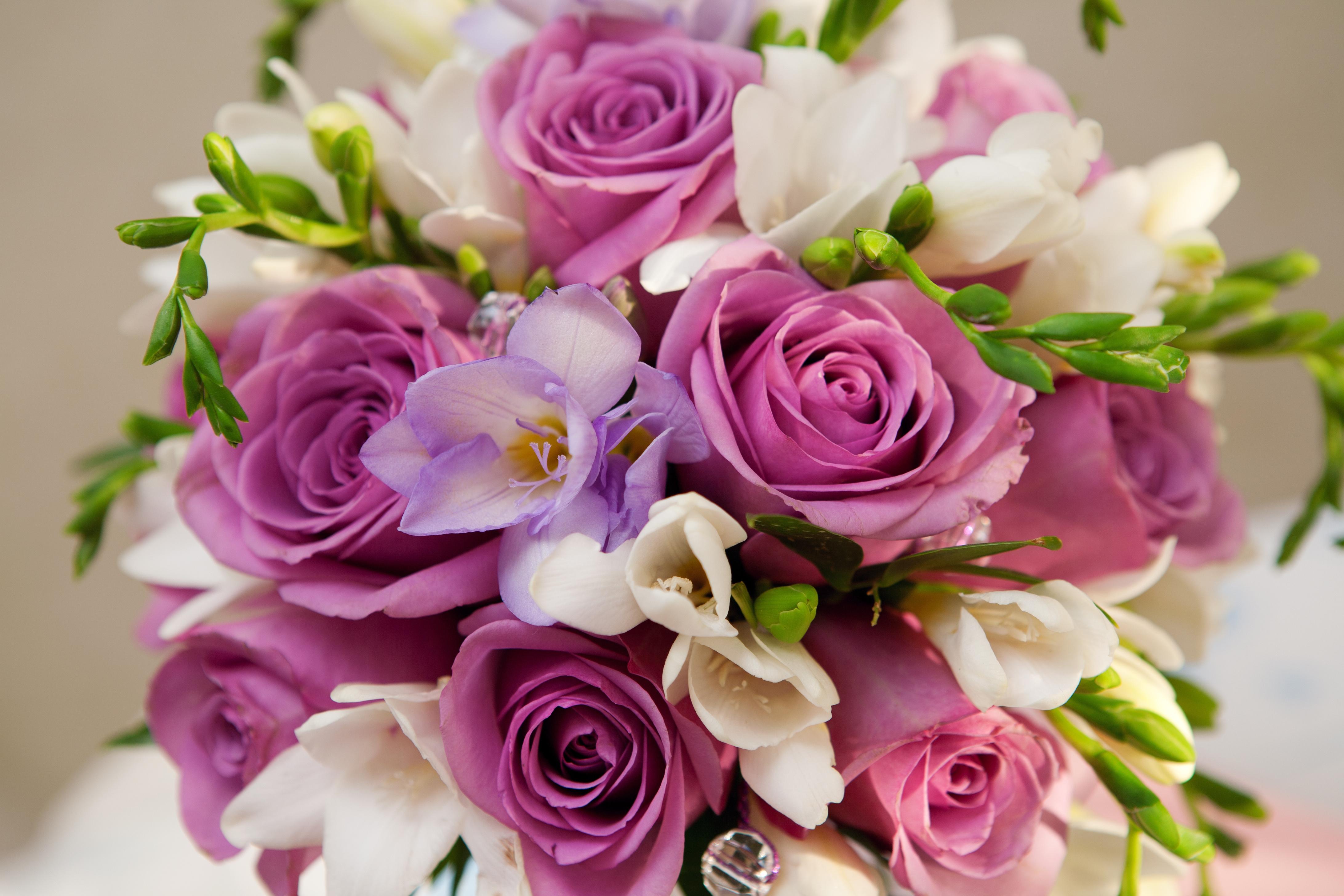 розы,желтые,букет,гипсофила,бутоны  № 761875  скачать