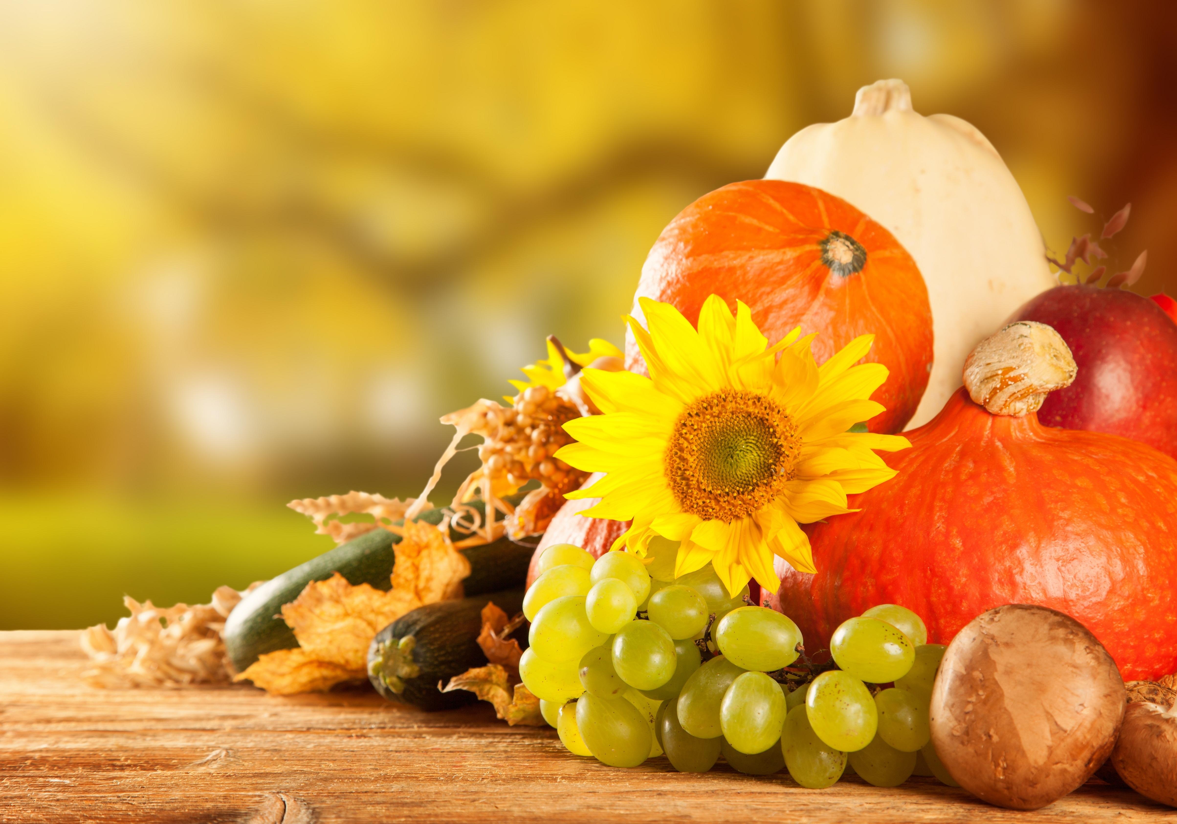 Картинки фрукты осень