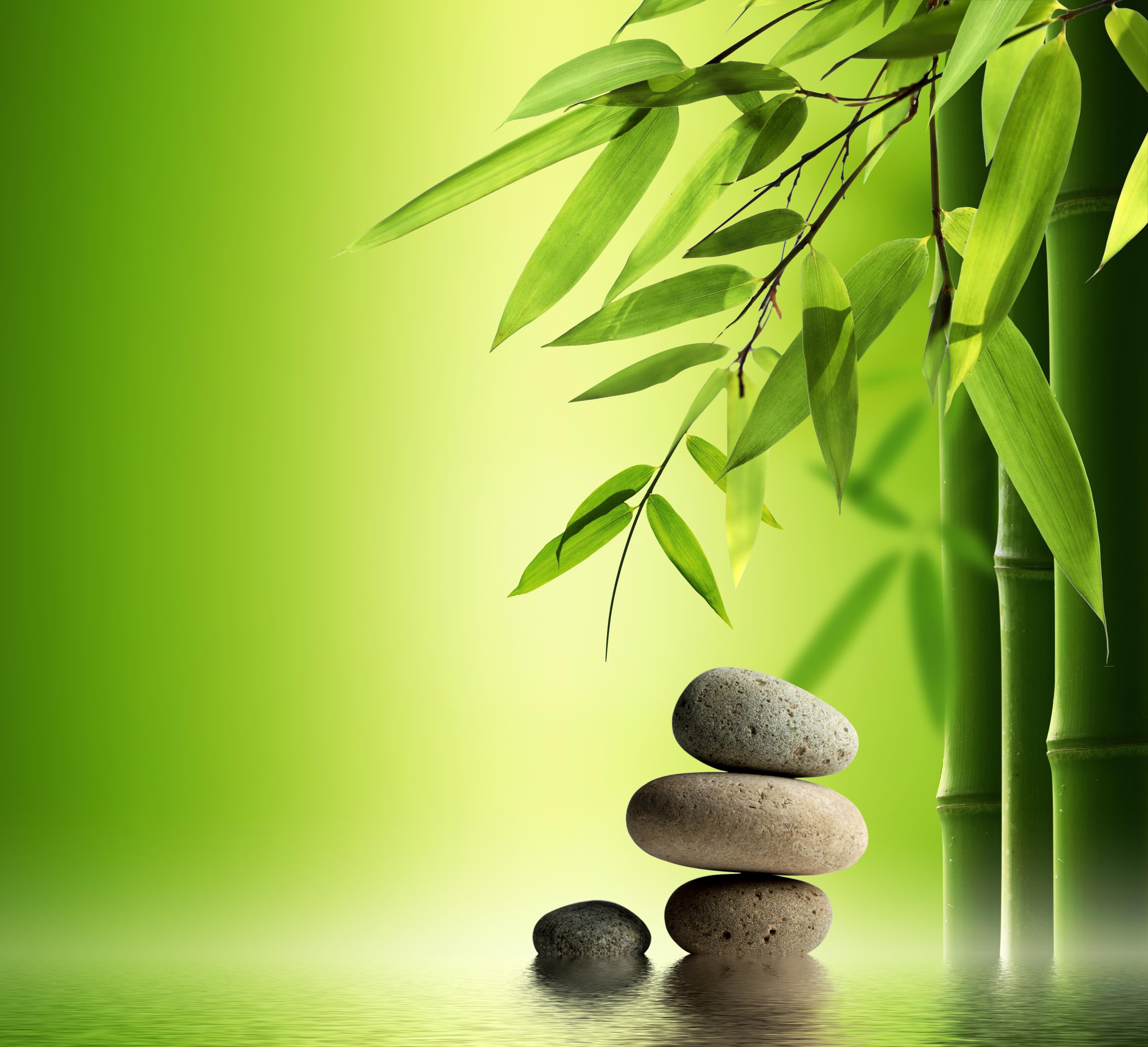nature s gift of natural resource abundance