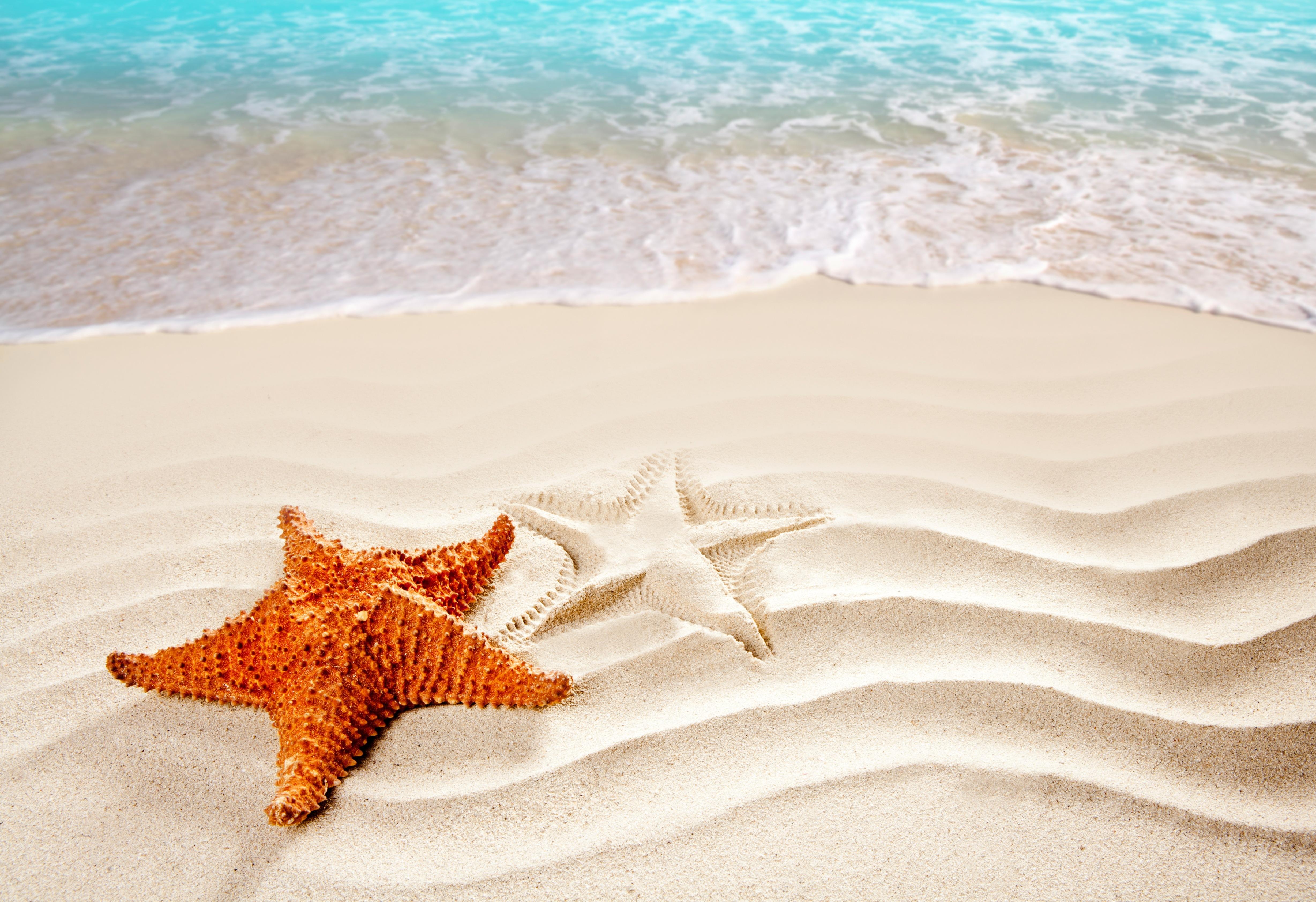 Свадебных приглашений, открытка пляжа