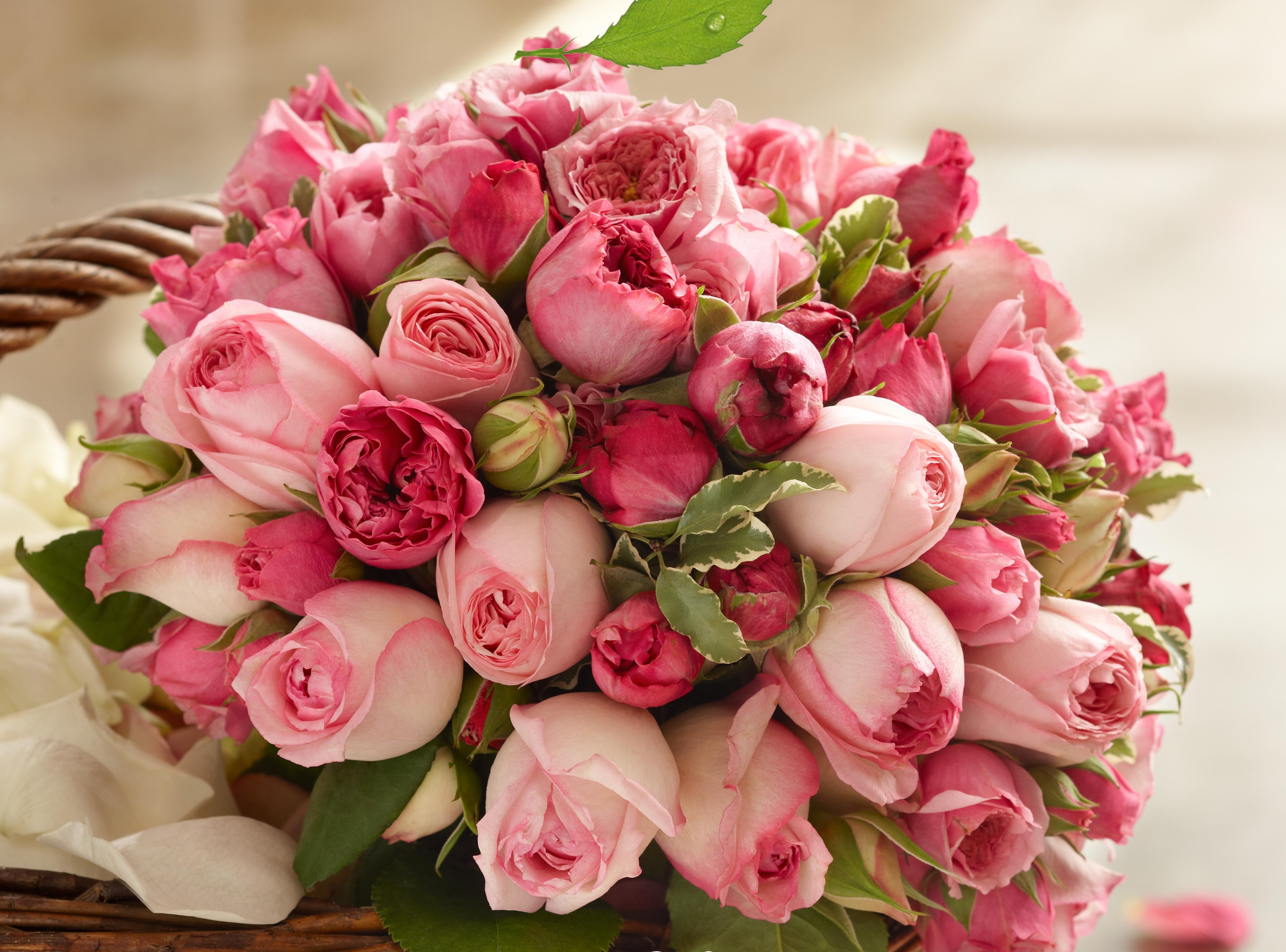 Надписью днем, самые красивые букеты цветов картинки