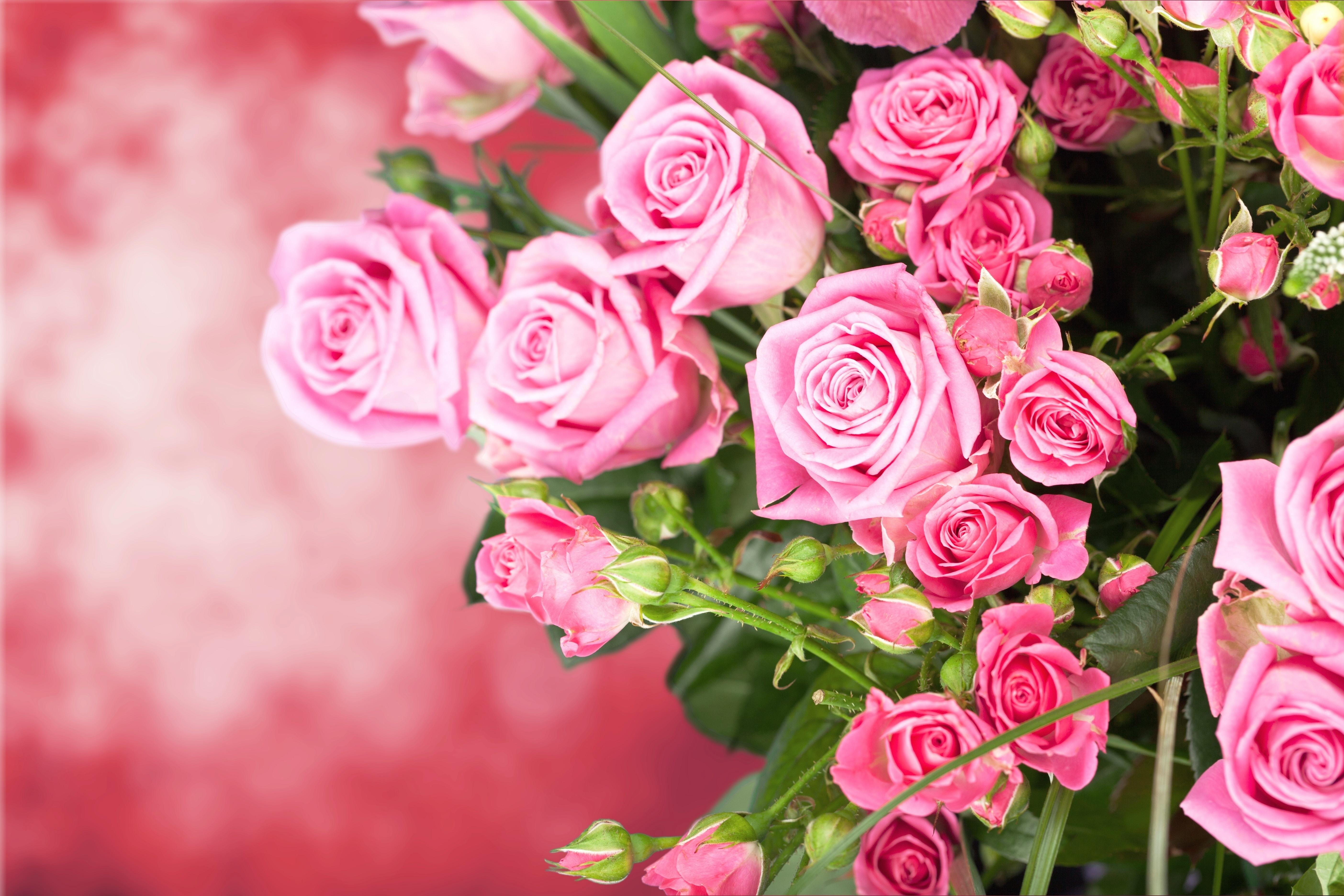 Про, открытки с розами рабочий стол