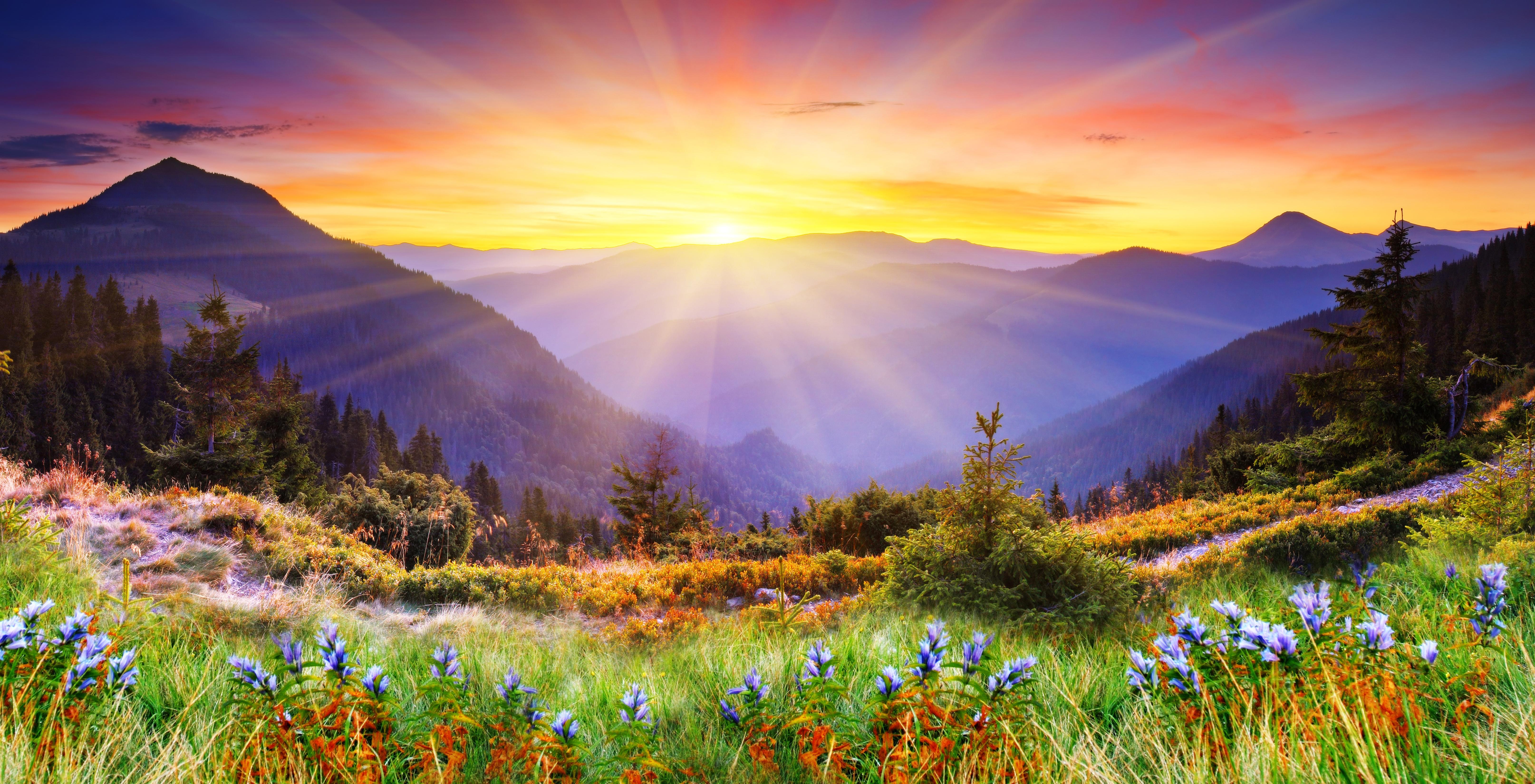 помятости картинки пейзажи с красивой природой и цветами большой