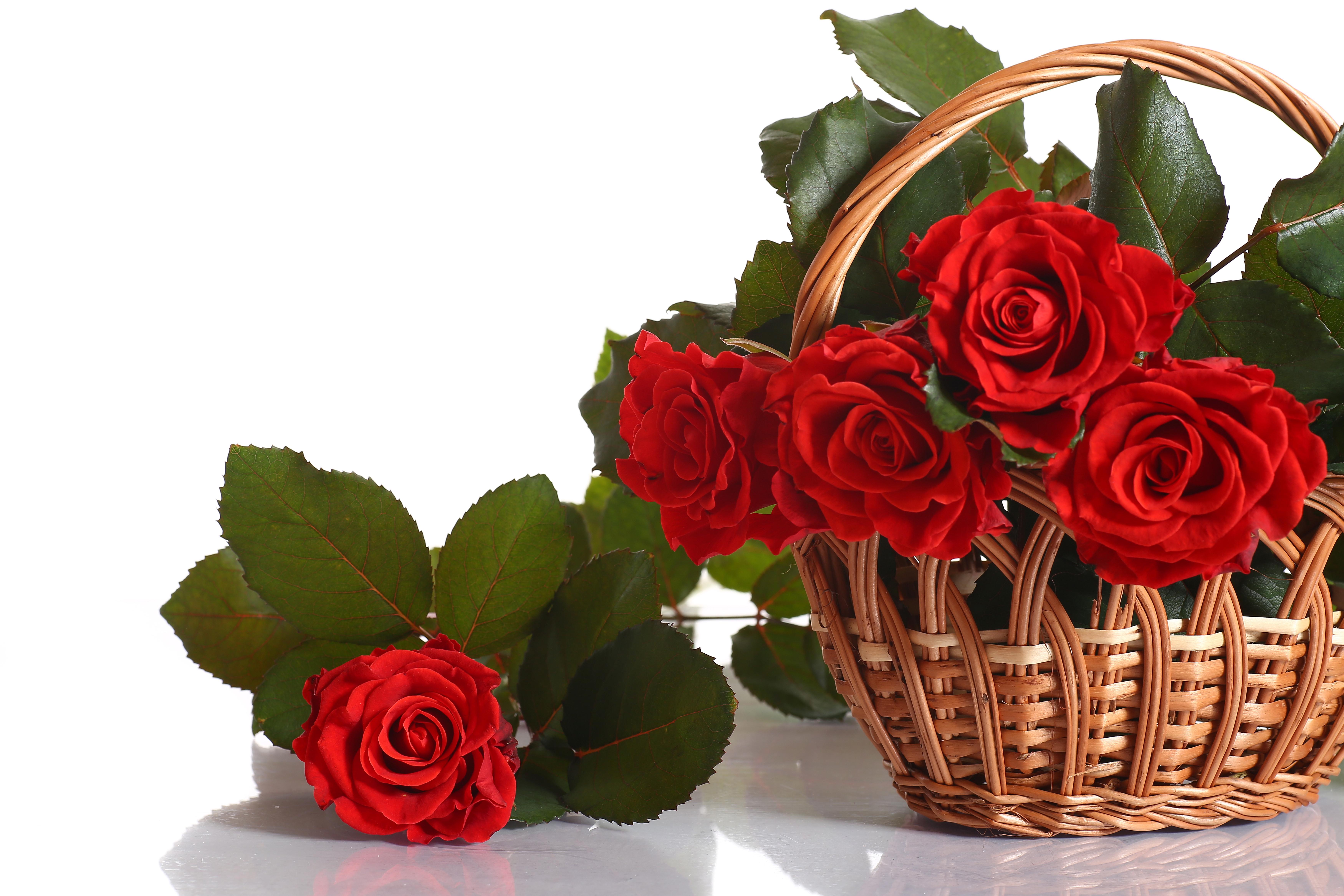 Красивые букеты цветов с надписью для тебя, цветы