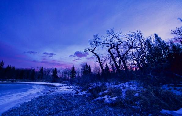 Картинка зима, снег, деревья, озеро, рассвет, зарево