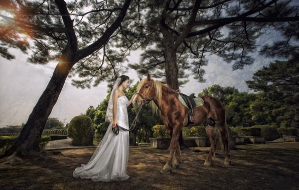 Картинка девушка, парк, настроение, конь, платье, азиатка, невеста, свадебное платье