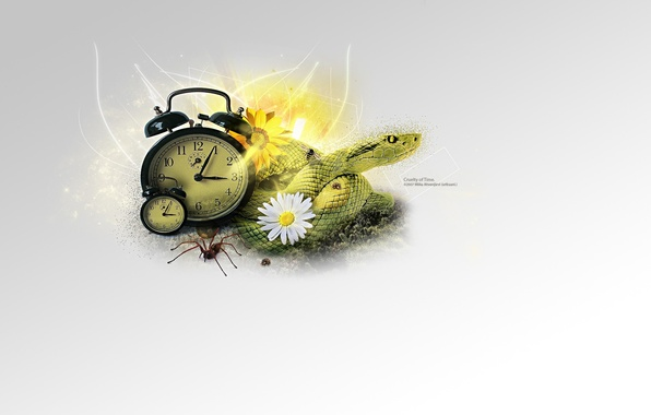 Картинка коллаж, часы, змея, минимализм