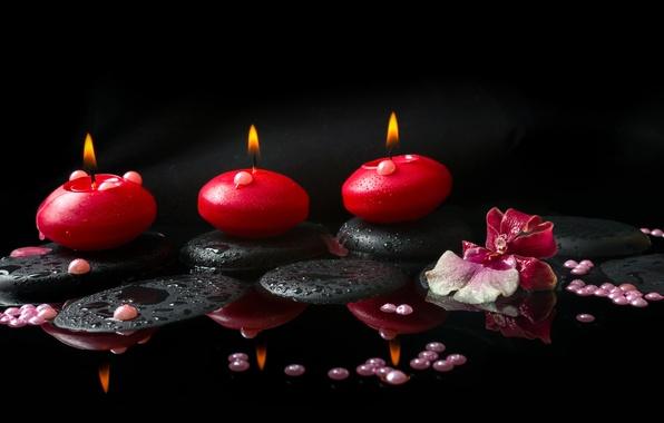 Картинка цветок, вода, свечи, орхидея, жемчужины, спа камни