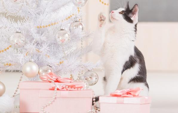 Картинка кошка, праздник, игрушки, новый год, подарки, бусы, украшение