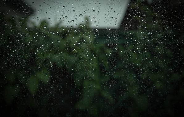Картинка стекло, капли, макро, дождь