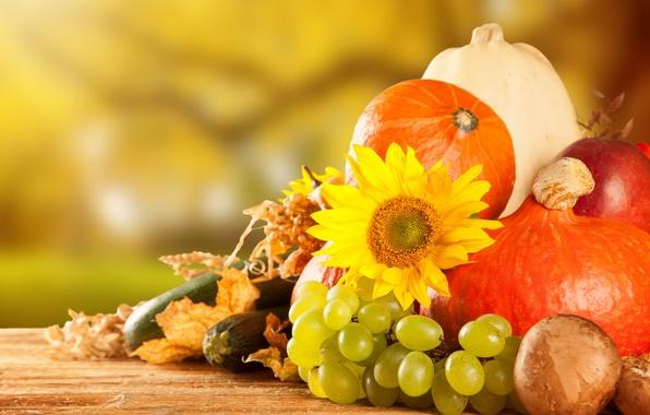 Картинка осень, яблоки, грибы, урожай, виноград, тыква, фрукты, овощи
