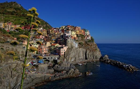 Картинка море, скалы, дома, бухта, Италия, Манарола, Чинкве-Терре, Лигурийское побережье