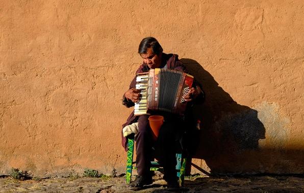 Картинка музыка, человек, акордеон