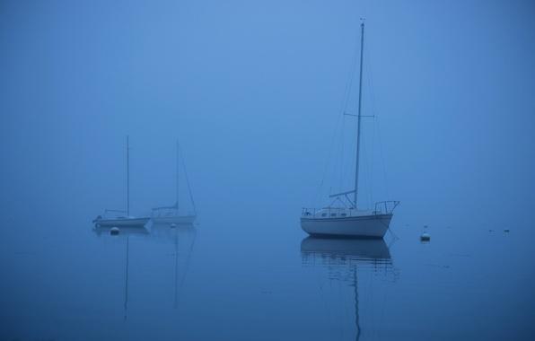 Картинка море, туман, лодка, яхта