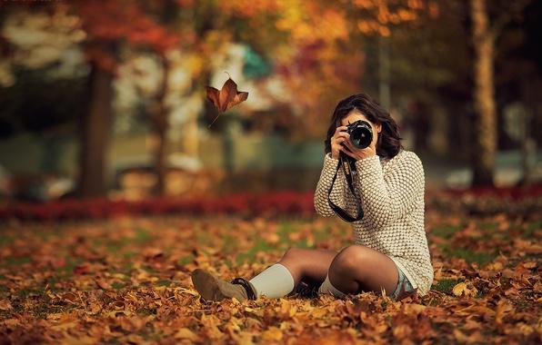 картинки осень девушка с листьями