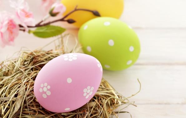 Картинка праздник, яйца, весна, желтые, зеленые, Пасха, гнездо, розовые, Easter, пасхальные