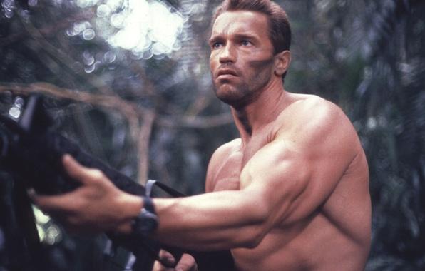 Картинка мужик, Хищник, Predator, Арнольд Шварценеггер, Arnold Schwarzenegger