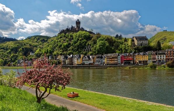 Картинка небо, трава, облака, деревья, пейзаж, река, замок, гора, дома, Германия, набережная, Cochem, Reichsburg