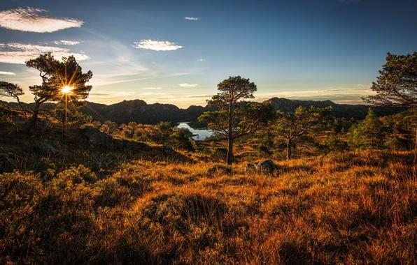 Картинка landscape, autumn, norway