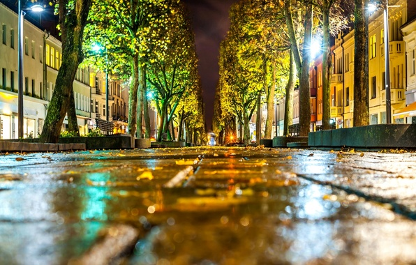 Картинка дорога, осень, асфальт, листья, макро, свет, деревья, город, улица, здания, дома, фонари, боке, Литва, Lietuva, …