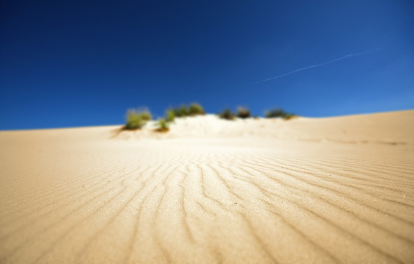 Картинка песок, пляж, фото, пустыня, пейзажи, африка