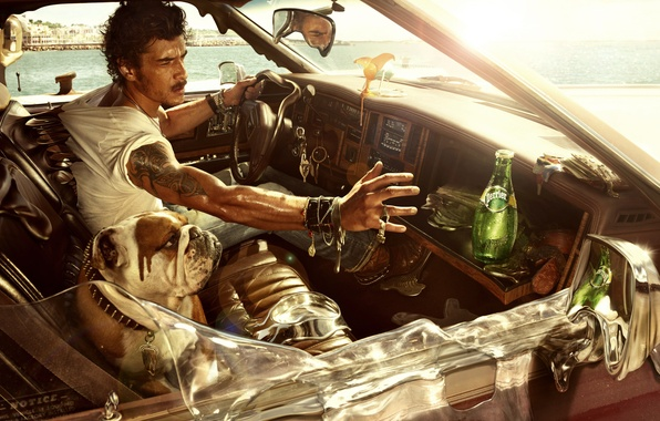 Картинка машина, лето, жара, собака, парень, perrier, минеральная вода
