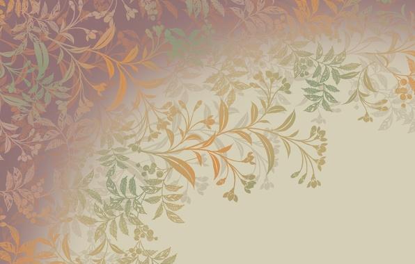 Картинка листья, цветы, ветки, узор, завитки, растения