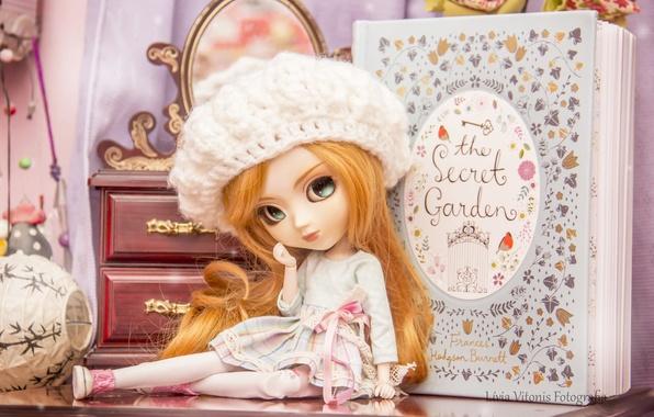 Картинка шапка, игрушка, кукла, девочка, книга