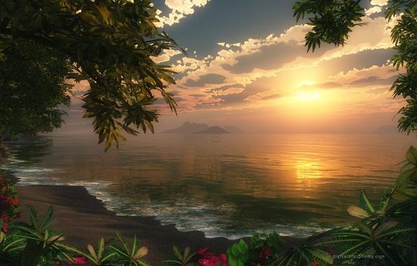 Картинка море, волны, лес, небо, вода, солнце, облака, деревья, закат, цветы, берег, forest, sea, Sunset