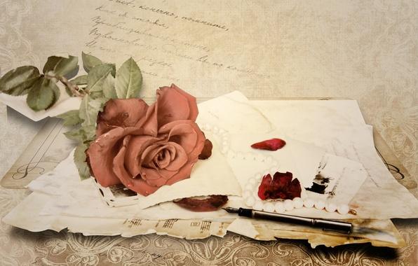Картинка письмо, бумага, ноты, роза, ручка, винтаж