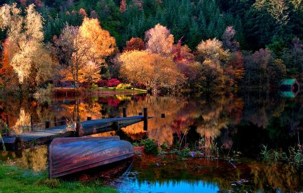 Картинка осень, лес, трава, листья, пейзаж, природа, озеро, лодка, дома, Деревья