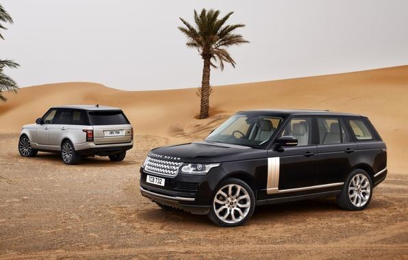 Картинка песок, небо, пальмы, чёрный, пустыня, серебристый, джип, внедорожник, Land Rover, Range Rover, вид сзади, передок, …