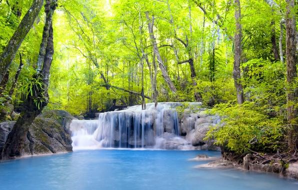 Картинка лес, река, водопад, forest, river, landscape, waterfall, emerald