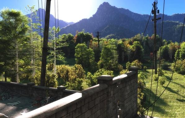 Картинка крыша, лес, деревья, пейзаж, горы, холмы, провода, арт, лэп