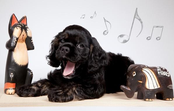 Картинка ноты, щенок, зевает, фигурки, слоник, кокер-спаниель