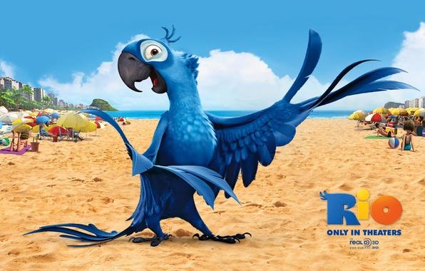 Картинка песок, пляж, птица, мультфильм, крылья, перья, клюв, попугай, ярко, красочно, рио, голубчик, рио-де-жанейро, голубой ара