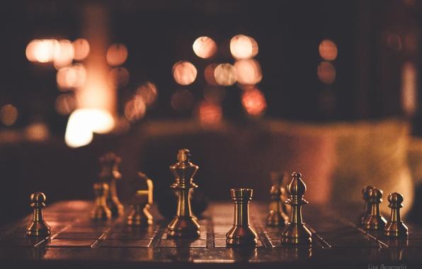 Шахматы фигуры картинки