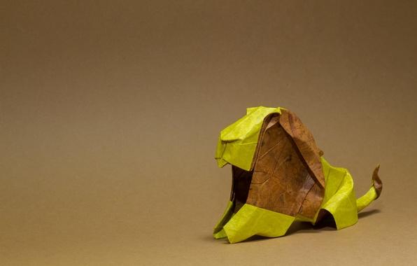 Картинка лев, грива, коричневый, оригами, brown, lion, origami, mane, brown mane, коричневый грива
