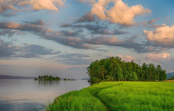 Картинка зелень, лето, небо, трава, облака, деревья, река, берег, вечер, островок, тропинка