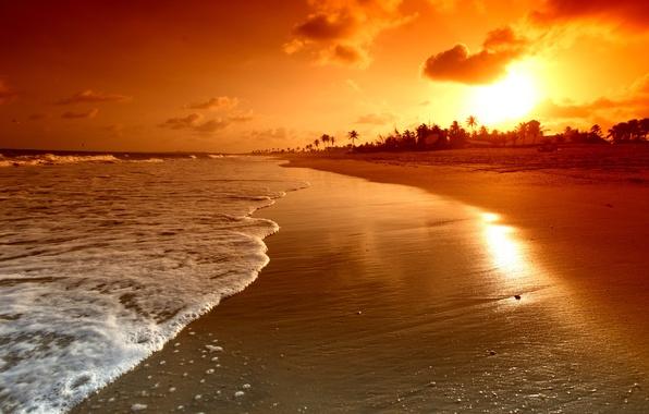 Картинка море, волны, пляж, небо, вода, облака, пейзаж, природа, пальмы, атмосфера, waves, beach, sky, sea, landscape, …