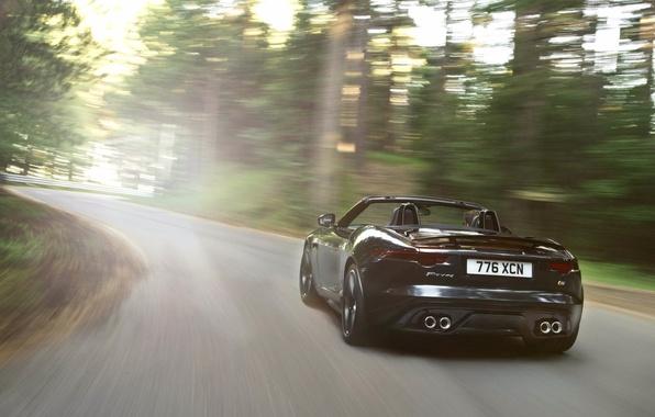 Фото обои свет, вид сзади, движение, f-type, кабриолет, черный, jaguar, ягуар