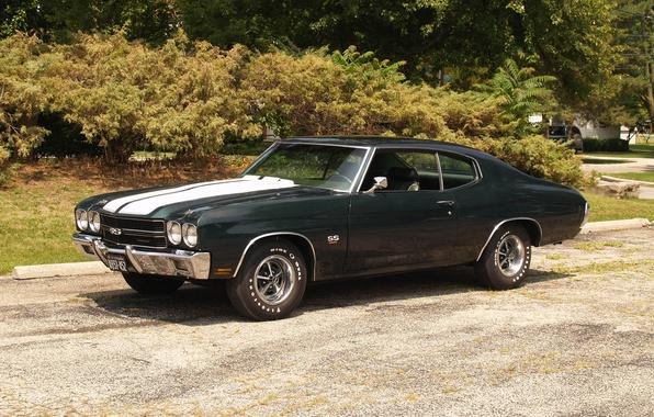 Картинка Chevrolet, автомобиль, шевроле, muscle car, Chevy, Chevelle
