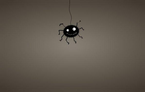 Картинка черный, минимализм, паутина, паук, spider, темноватый фон