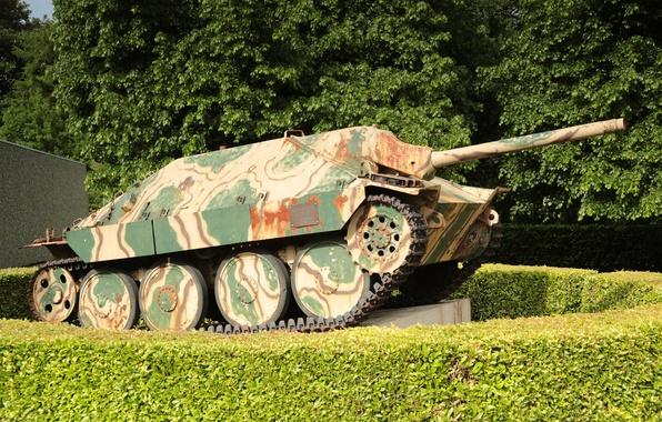 Картинка установка, самоходная, артиллерийская, (САУ), лёгкая, немецкая, Hetzer, истребителей, танков, класса, «Хетцер», Jagdpanzer 38