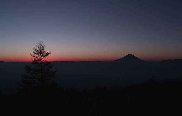 Картинка небо, дерево, гора, Япония, горизонт, зарево, Фудзияма