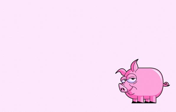 Картинка розовый, минимализм, хвост, свинья, pig
