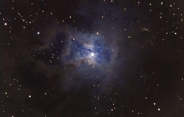 Картинка туманность, Цефей, Ирис, в созвездии, отражательная, скоплением, с рассеянным, звёздным