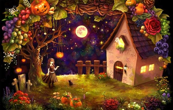 Картинка кошка, кот, звезды, ночь, дом, луна, кресты, урожай, девочка, тыквы, хижина, фрукты, овощи, halloween, привидение