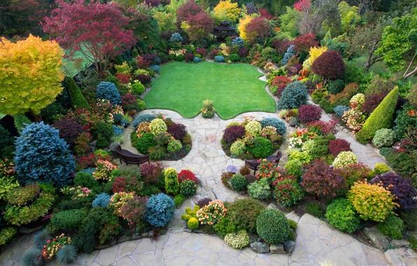 Картинка осень, деревья, цветы, дизайн, парк, газон, Великобритания, кусты, вид сверху, красочно, лавочки, Walsall Garden