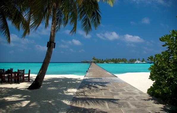 Картинка песок, пляж, лето, пальмы, океан, мальдивы